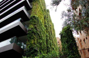 Най-голямата вертикална градина в света